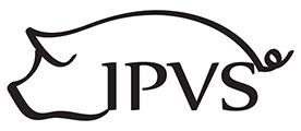 IPVS Logo